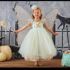 Pottery barn fairy/butterfly costume 4-6 yrs